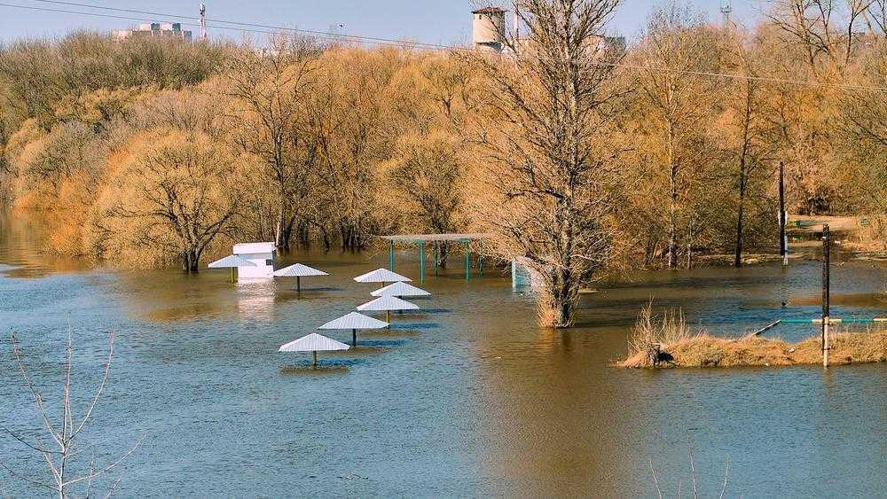 В Брянске из-за паводка затопило речной пляж возле вокзала