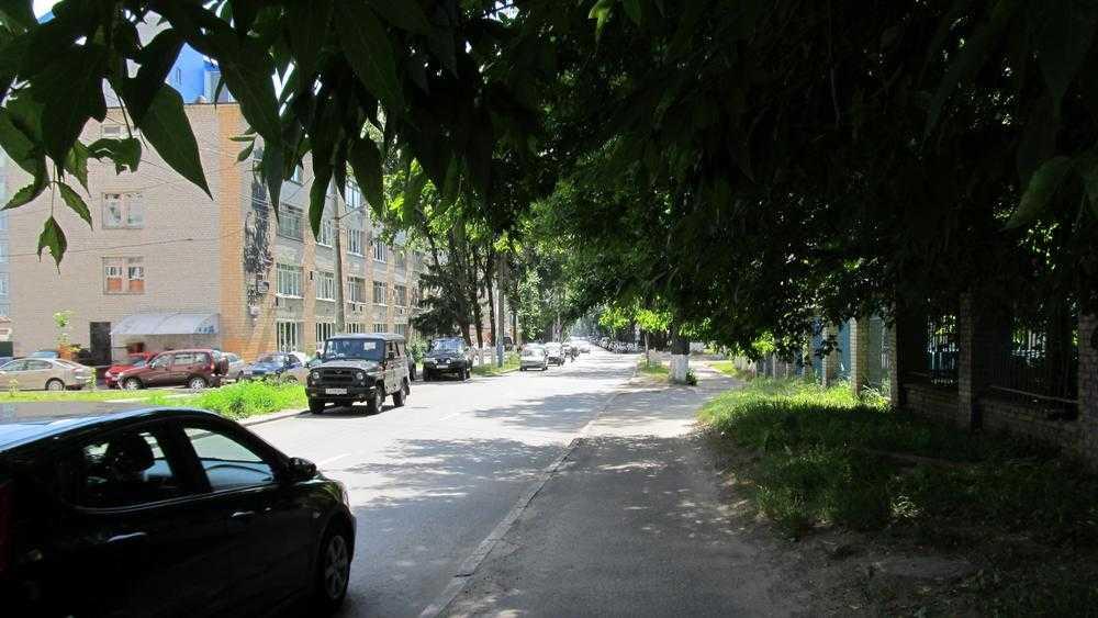 В Брянске при расширении дороги на улице Горького спилят 9 гнилых деревьев