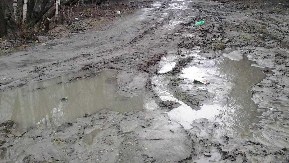 В Брянске дорога от улицы Ульянова к школе №14 утонула в грязи
