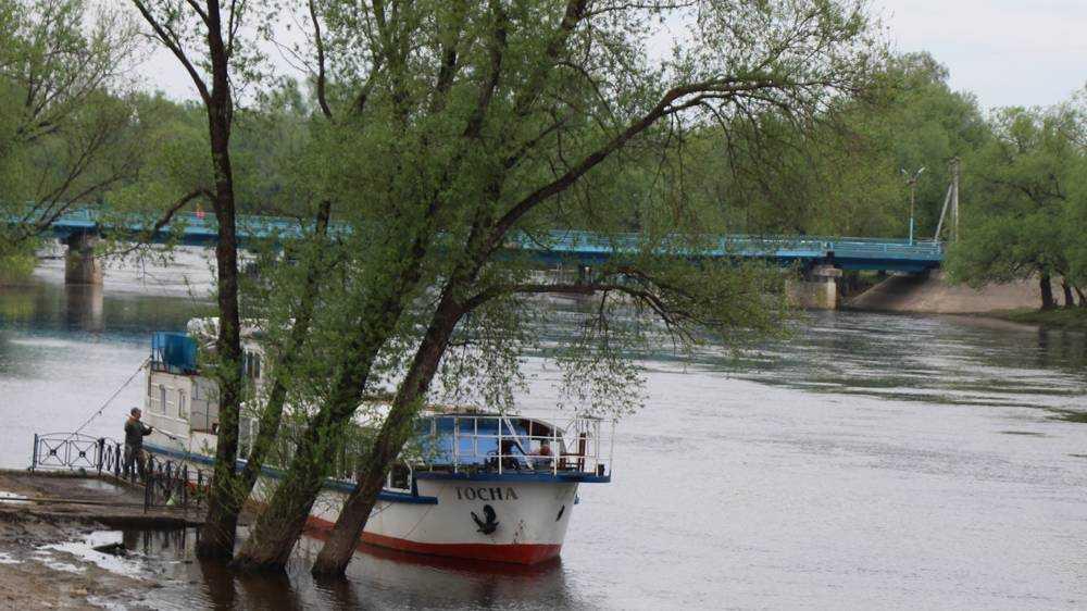 В Брянске строители начали возведение четырёхполосного моста на набережной