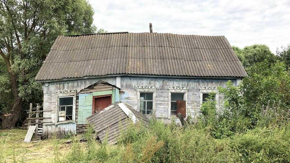 В брянском селе случилась череда бед, начавшаяся с цветущего папоротника
