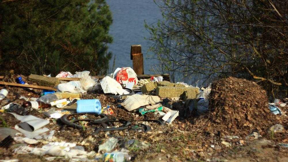 Под Брянском возле озера Орлик совершили чудовищное преступление