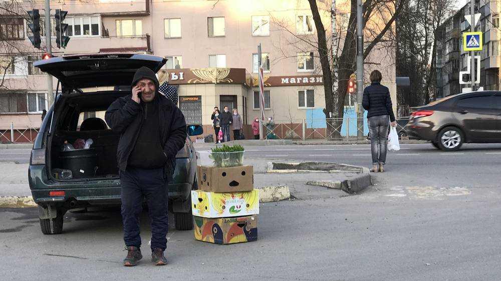 В Брянске на улицах стали продавать зелень из леса