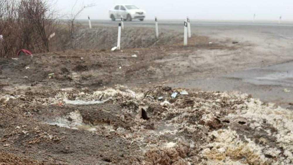 Под Брянском выгрузили зловонные кучи отходов производства