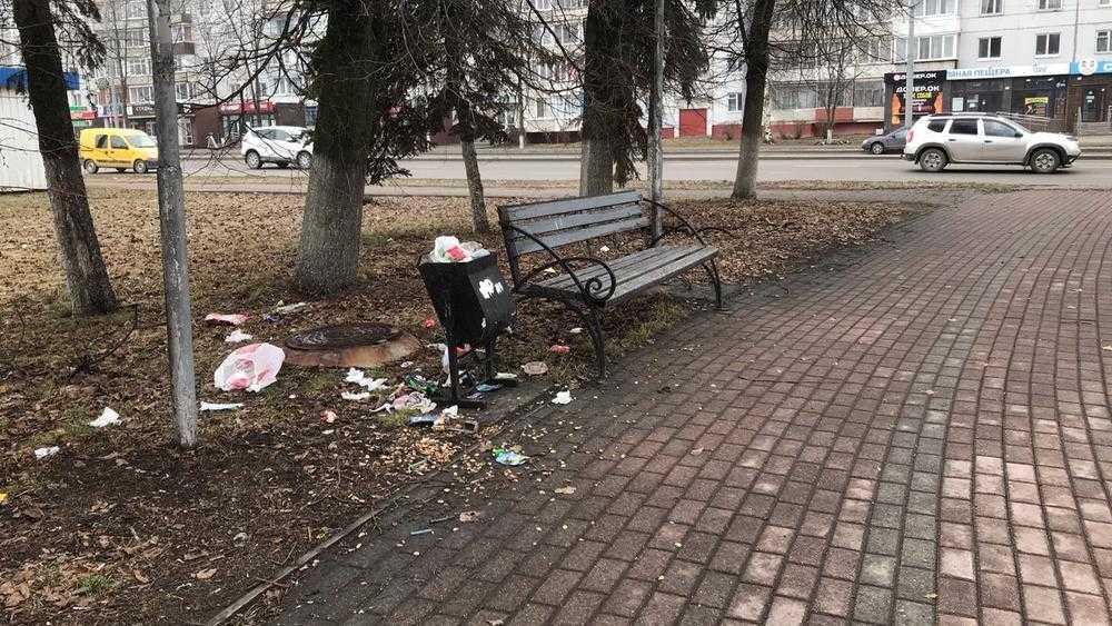 Брянская молодежь превратила в свинарник сквер у памятника Летчикам