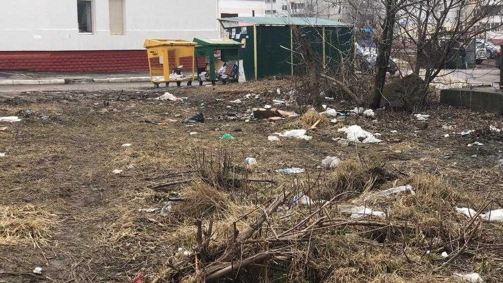 Брянские депутаты решили найти управу на мусорщиков «Чистой планеты»