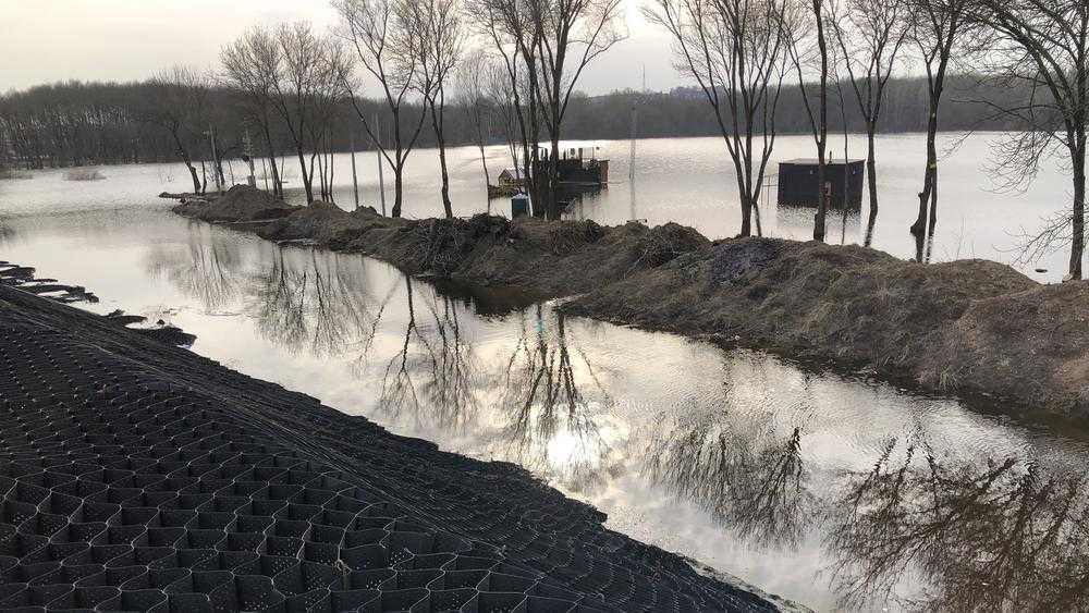 В Брянске возле озера Мутного благоустроят территорию