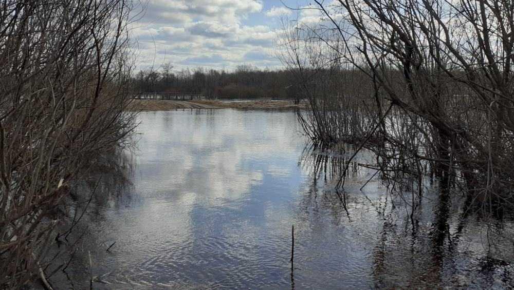 В Брянской области пик весеннего половодья ожидается с 6 по 10 апреля