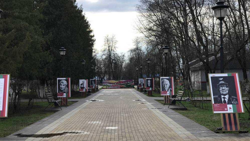 В Брянске в парке Железнодорожников повалили портреты ветеранов