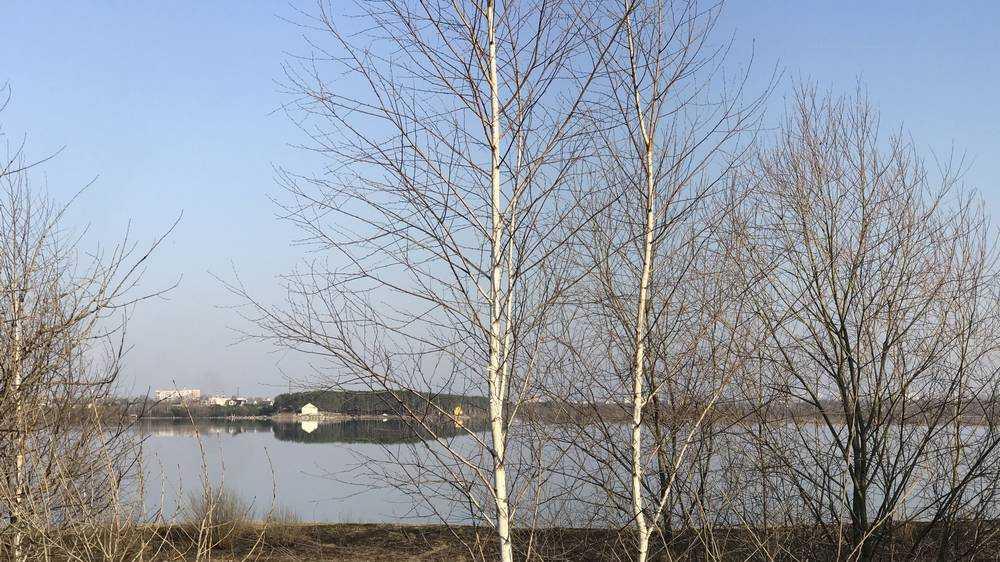 Половодье до предела расширило площадь озера Орлик под Брянском
