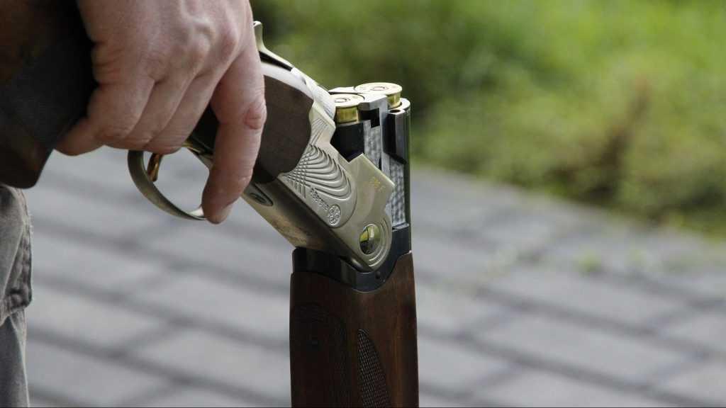 В брянской Радице-Крыловке при стрельбе ранен человек