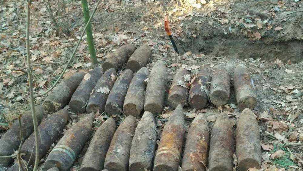 Под Брянском в лесу обнаружили 21 снаряд и мину времён войны