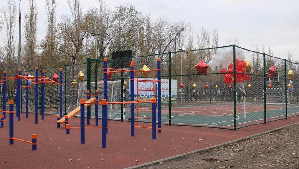 В пяти школах Брянска обустроят комплексные спортплощадки