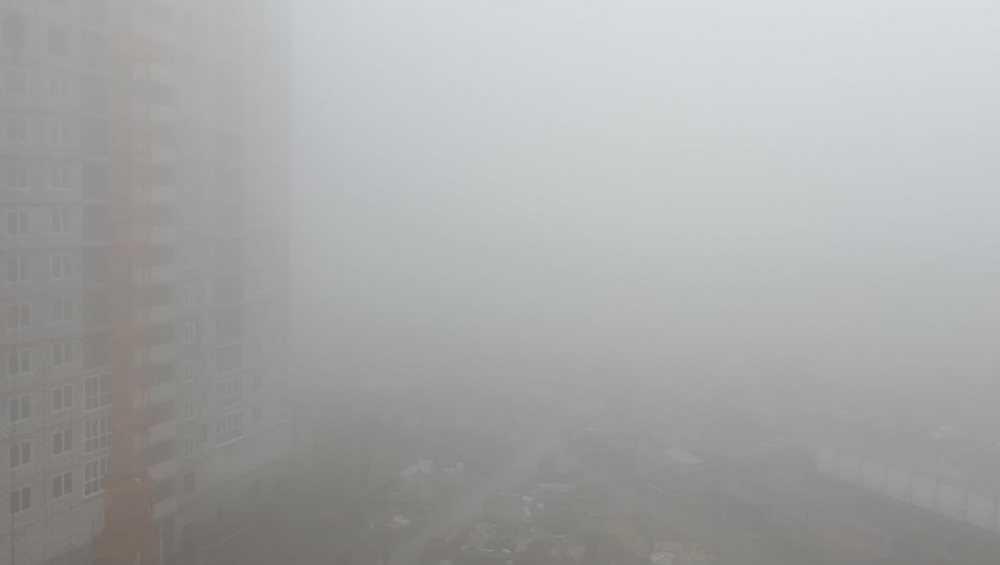 Брянск утром накрыло густым туманом