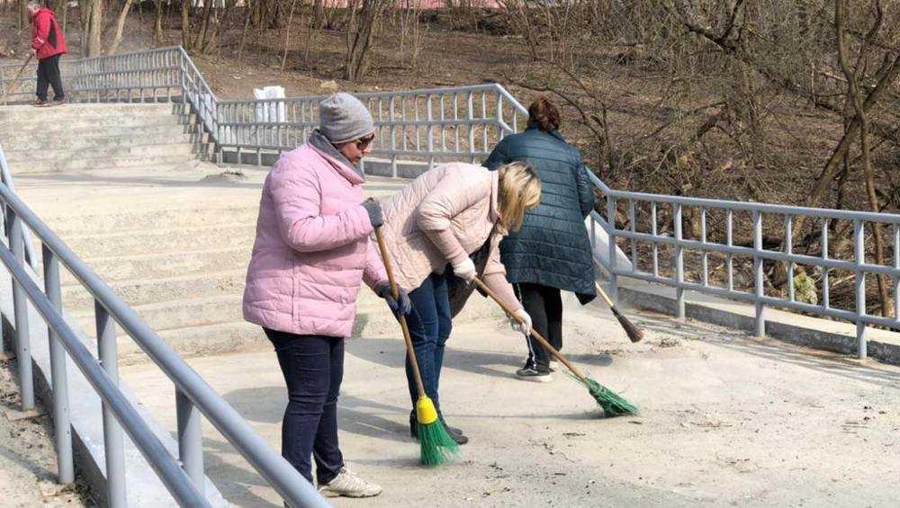 С Центрального пляжа Брянска вывезли около 15 кубометров мусора