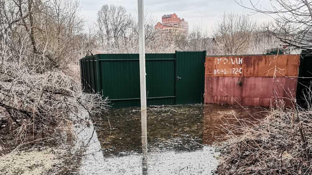 В Брянске реки Десна и Болва затопили 6 садовых и приусадебных участков