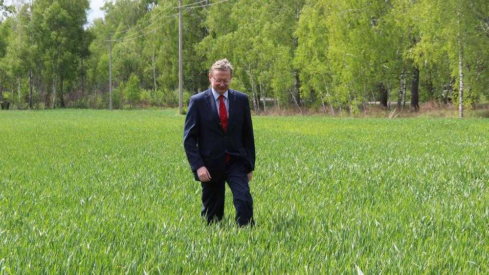 В Брянской области снизился риск гибели сельскохозяйственных культур