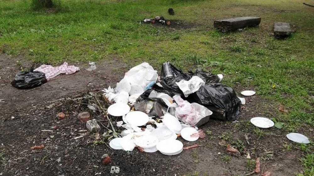 Жители Карачева Брянской области очистили от мусора живописную рощу