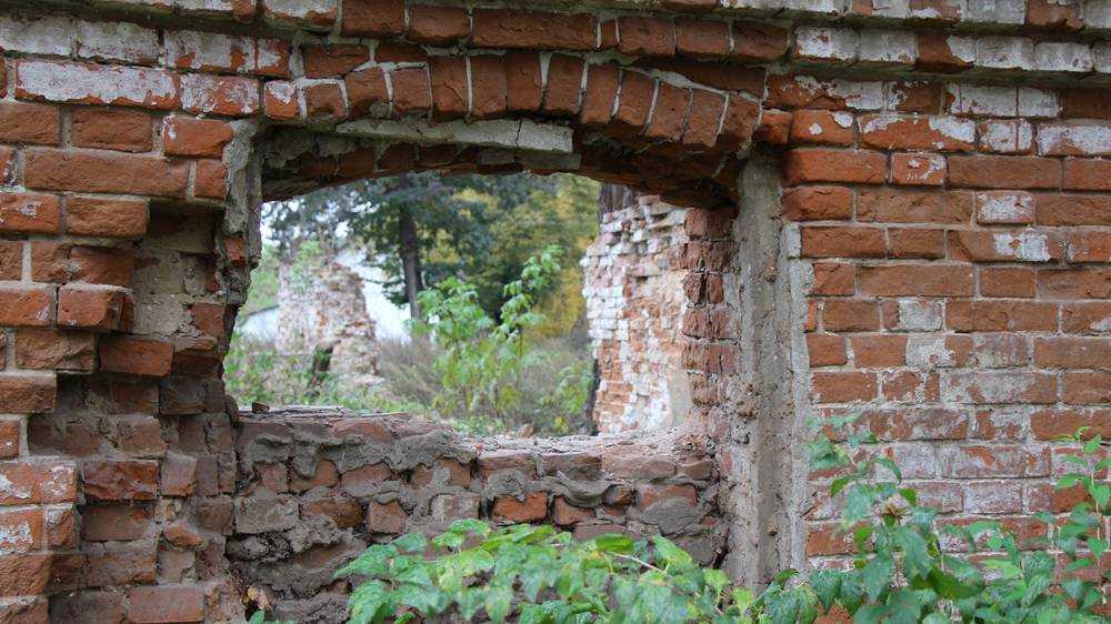 В Брянске оценили перспективы реконструкции усадьбы Тенишевых в Хотылеве