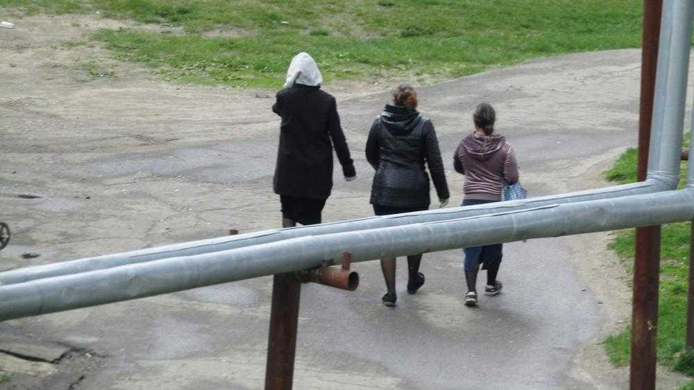 Жителей Брянской области предупредили о трех смуглых воровках