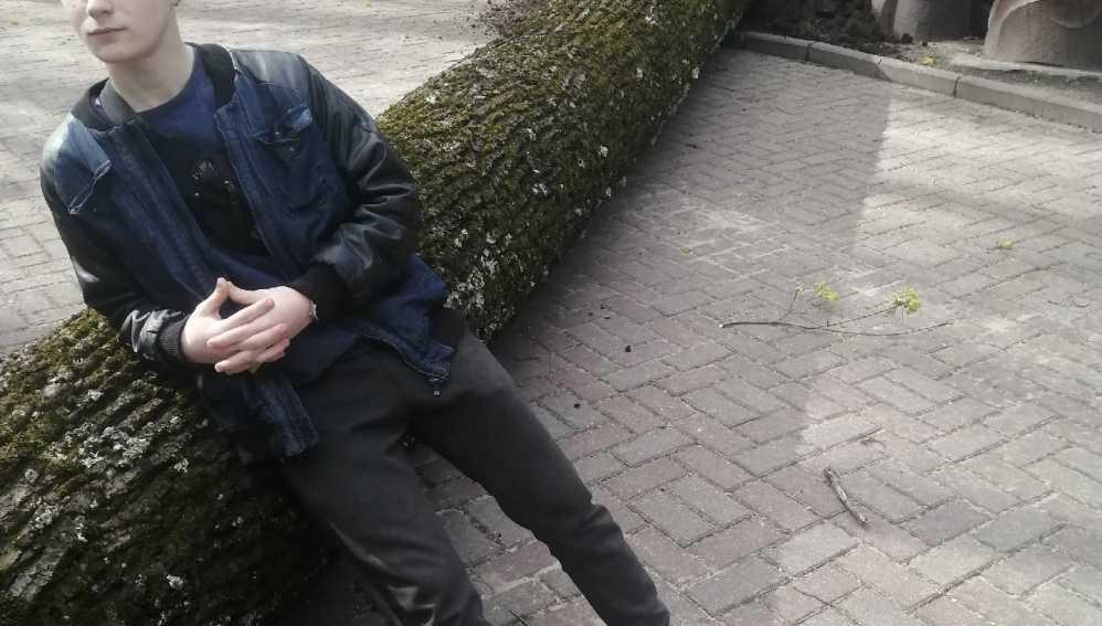 В брянском парке Толстого рухнуло дерево