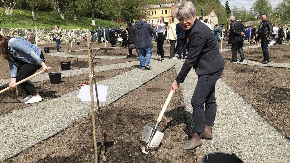 Сотрудники Брянской городской администрации посадили деревья в Саду Победы