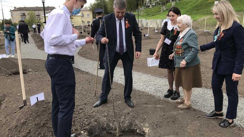 Губернатор Брянской области Богомаз 12 мая в Саду Победы посадил яблоню