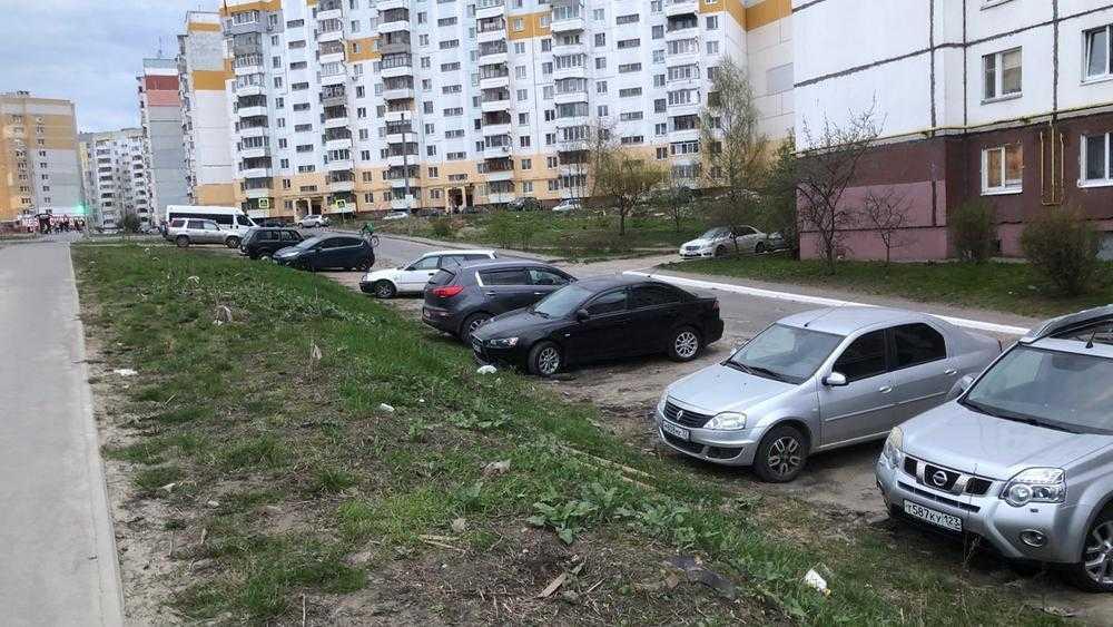 Брянские автомобилисты зубами проголосовали за новое градостроительство