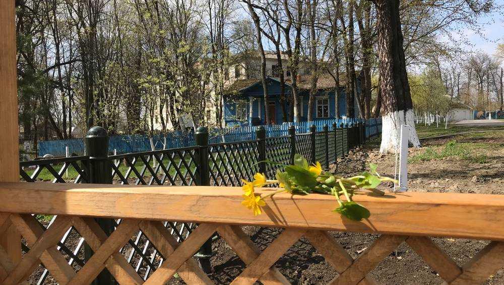 В Брянской области 10 мая потеплеет до 19 градусов