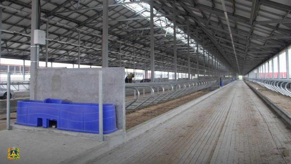 В Брасовском районе в июне достроят корпус крупнейшей фермы Брянской области