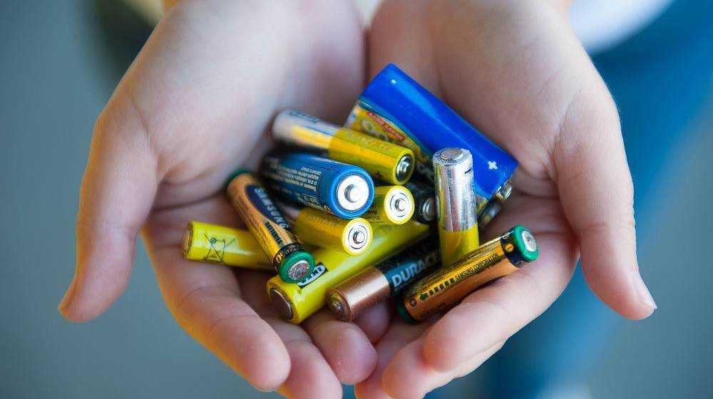 «Неделя сбора батареек» в Брянске поможет сохранить природу