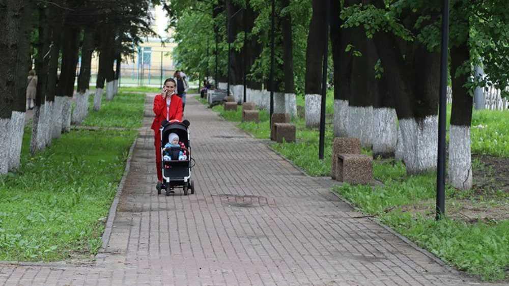 Власти Брянска выявили недостатки в благоустройстве сквера Энергетиков