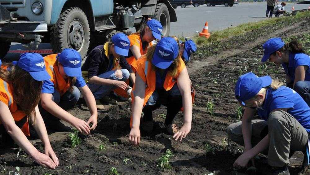 В Брянске летом для подростков организуют 740 рабочих мест