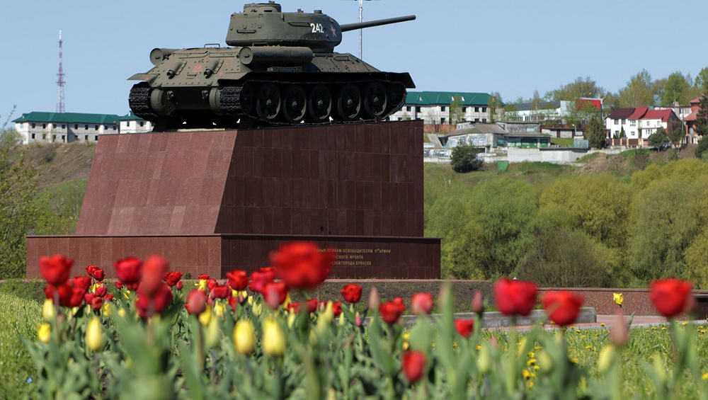 В Брянске на улицах и площадях расцвели тысячи весенних тюльпанов
