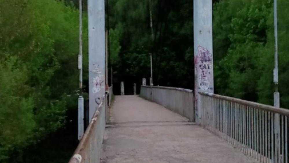 Жители Брянска попросили привести в порядок мост в роще Соловьи
