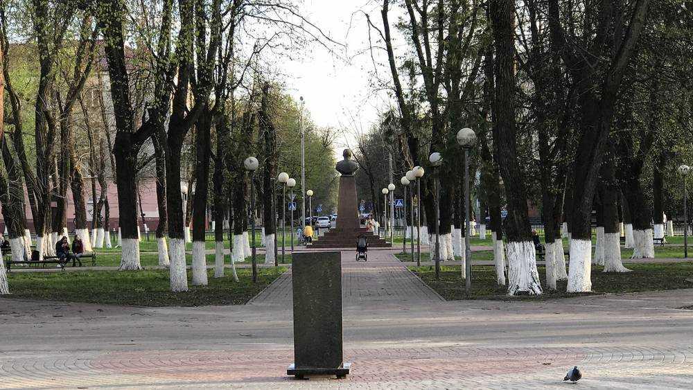 В Брянске в сквере Павла Камозина должен появиться самолет ЯК-3