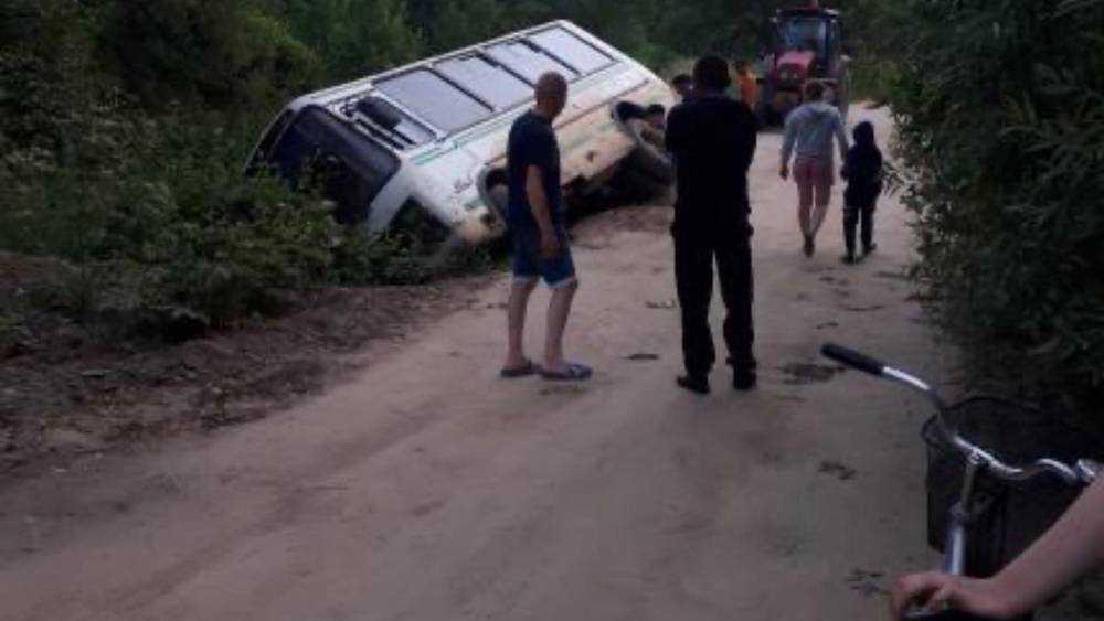 В деревне Немерь Брянской области автобус съехал в кювет