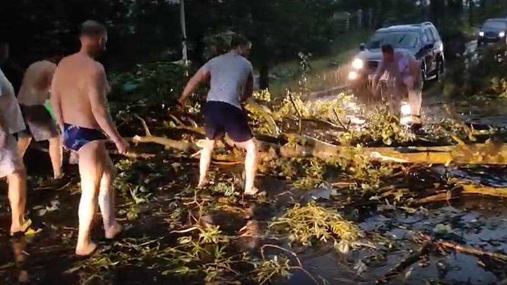 В Брянске ехавшим с Орлика парням пришлось очищать дорогу от упавших деревьев