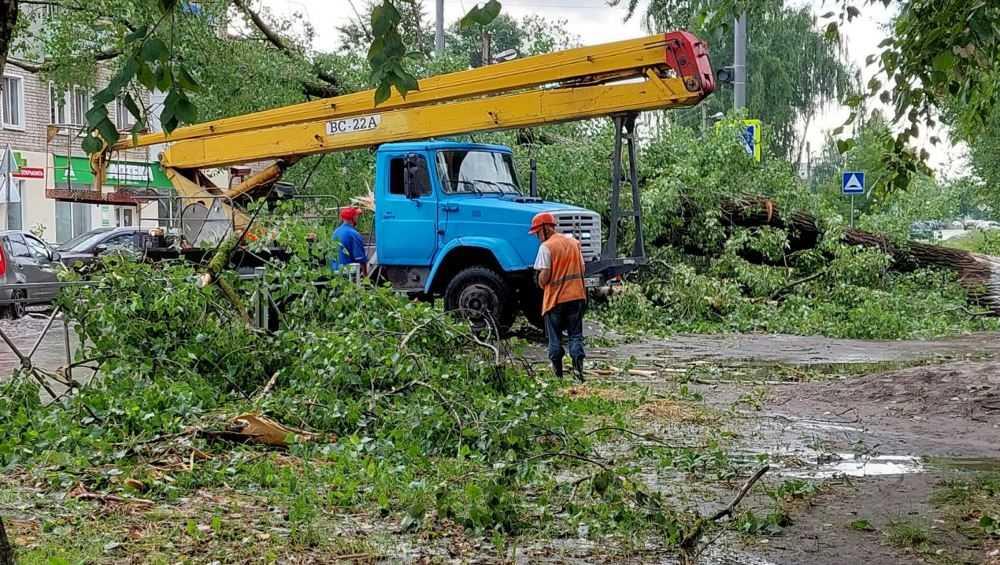 В Брянске ураган повредил 6 автомобилей, 14 светофоров и 5 знаков