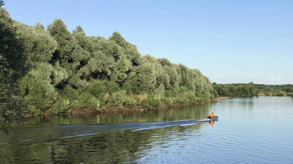 Из реки Десны в Брянске 24 июня водолазы подняли тело 41-летнего мужчины
