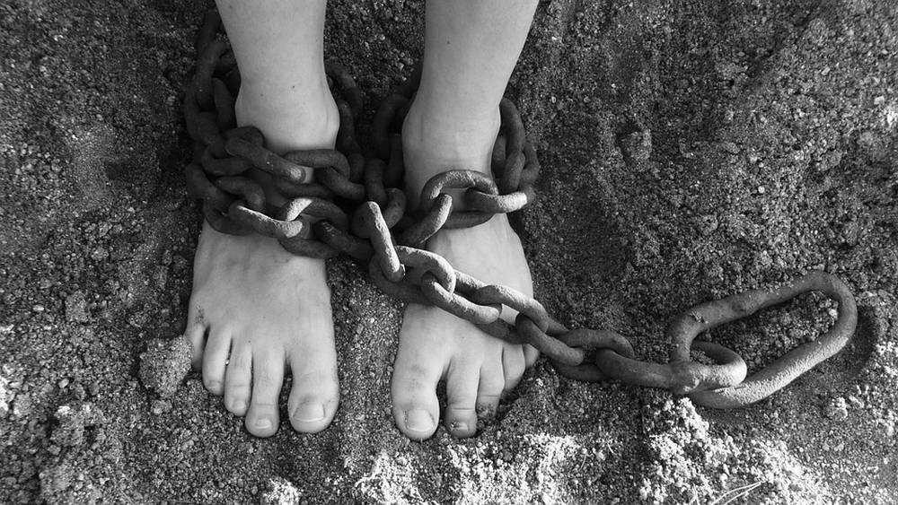 В Брянске укусившую участкового за палец женщину осудили условно
