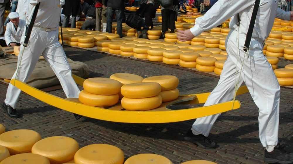 Брянская область вышла на 3-е место в России по производству сыров