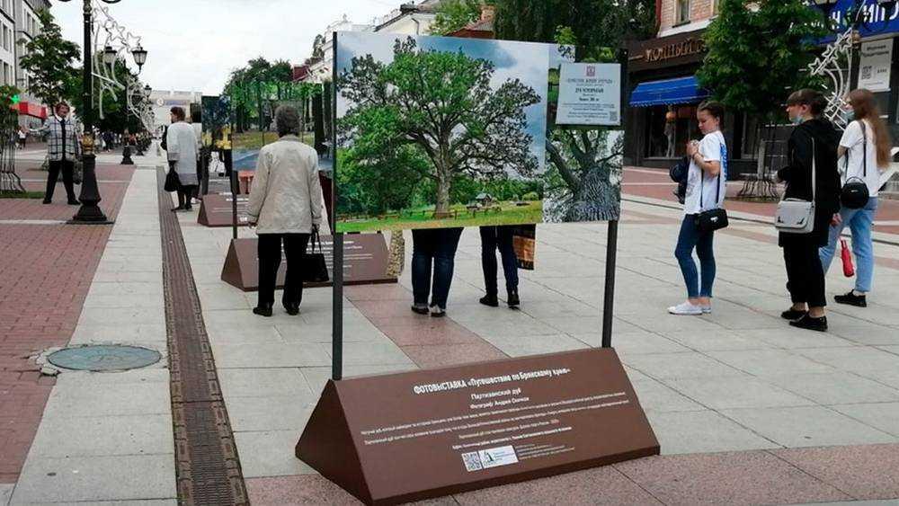 В Брянске на бульваре Гагарина открылась выставка «Путешествие по Брянскому краю»