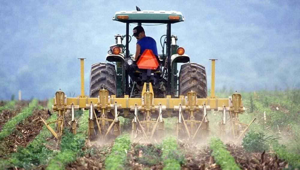 В Брянской области начинающим фермерам дадут около 36 миллионов рублей