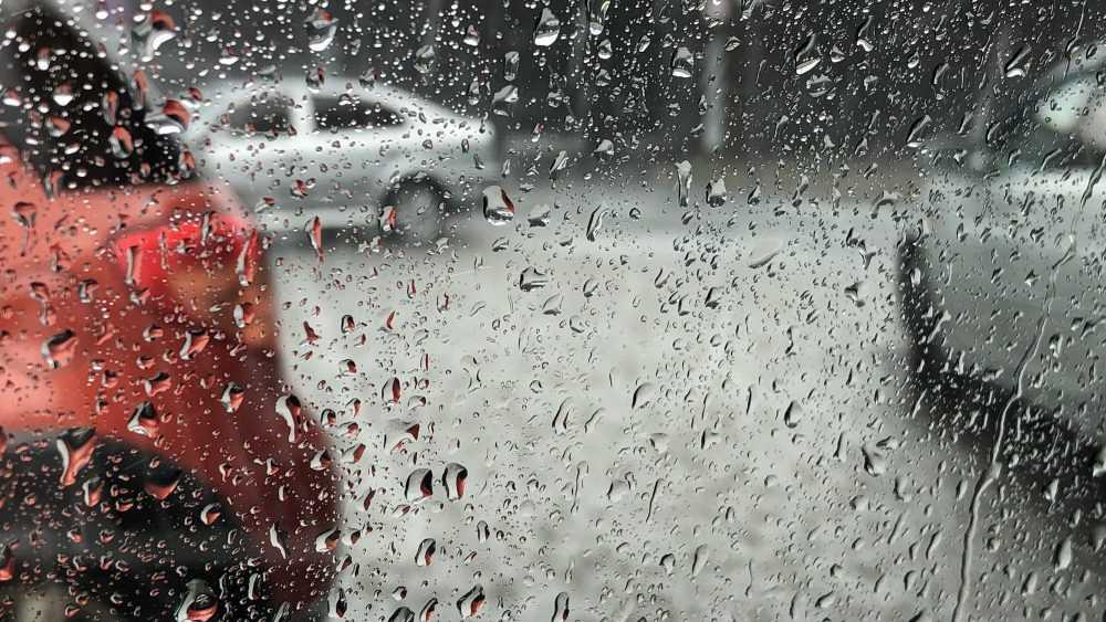 Синоптик предупредил о затяжных дождях в Брянской области
