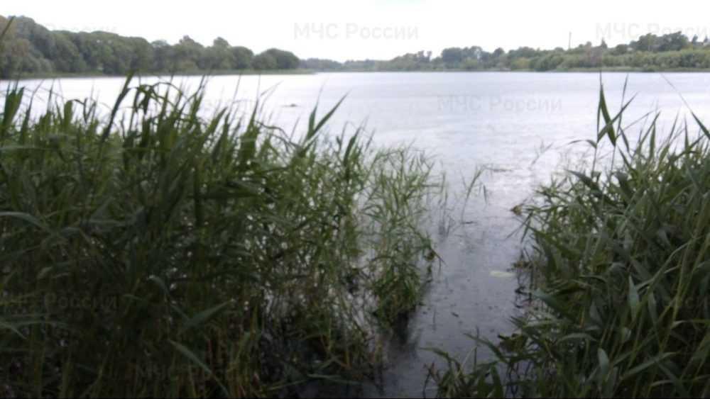 В Стародубском районе из озера подняли тело 63-летнего мужчины