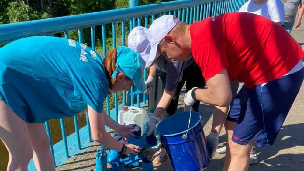 В Брянске неравнодушные жители покрасили Голубой мост в роще «Соловьи»