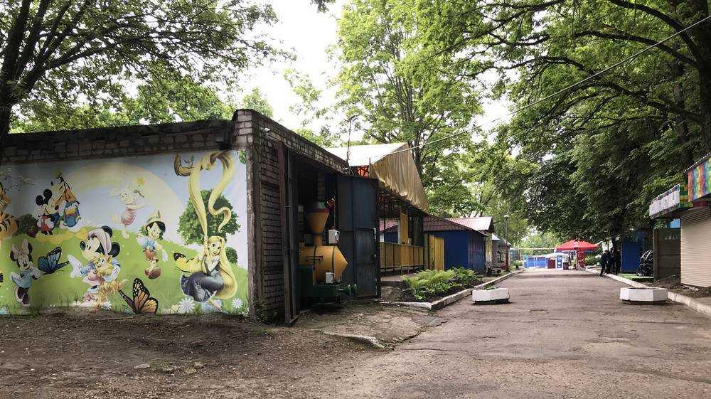 В Брянском парке обнаружили гараж для экзотического паровозика
