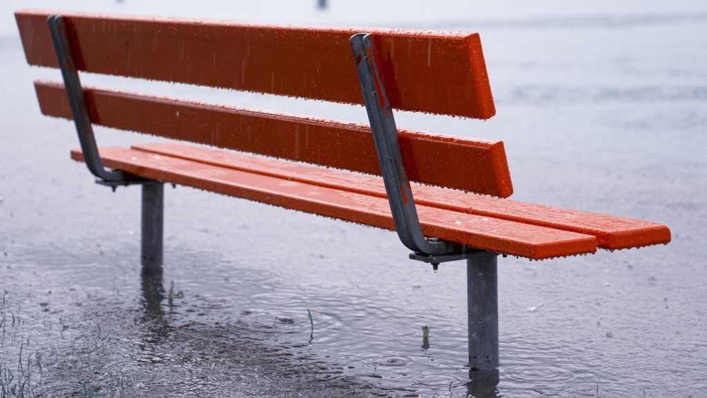 В Брянскую область придут дожди