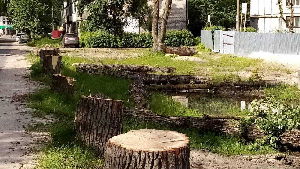В Брянске уничтожили целую аллею на улице Металлургов